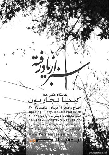 نمایشگاه عکس های کیمیا نجاریون با عنوان سبز از یاد رفته در گالری ایده پارسی